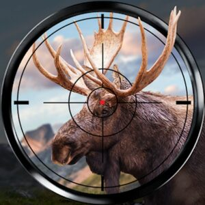 Wild Hunt Sport Hunting Games. Hunter & Shooter 3D APK MOD